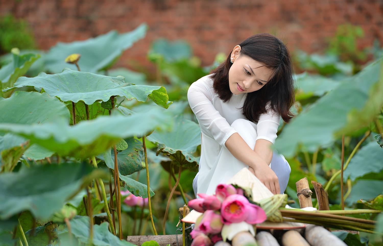 Hà Nội rực rỡ trong những sắc hoa mùa hè Ảnh 50