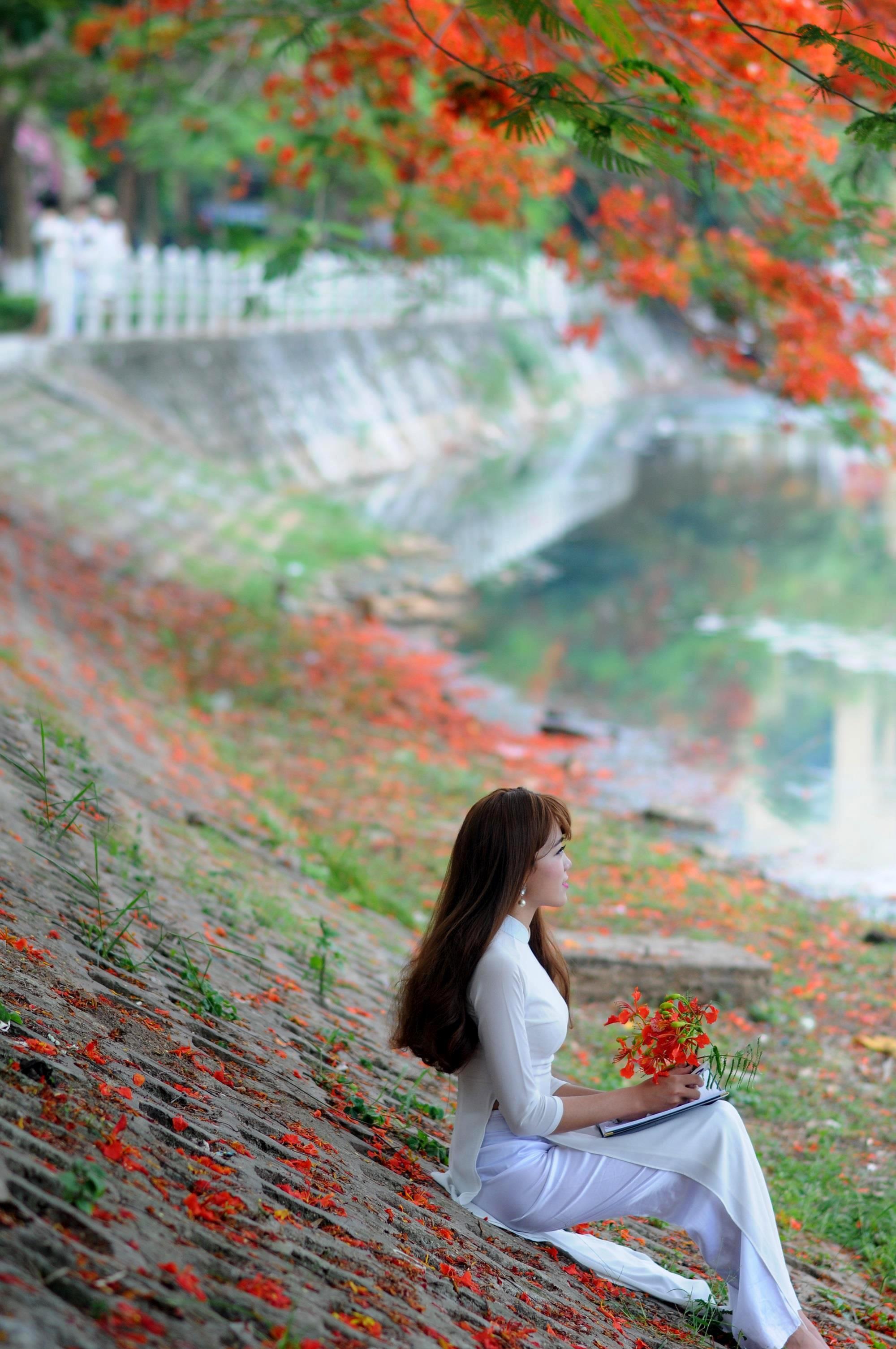 Hà Nội rực rỡ trong những sắc hoa mùa hè Ảnh 23