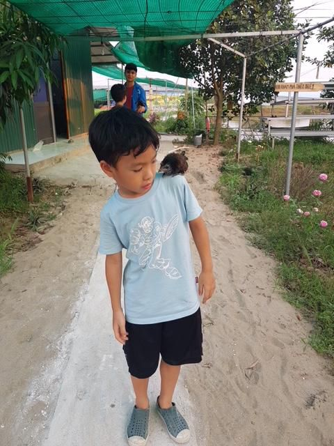 Nông trại VAC 4.0: Khu vui chơi trải nghiệm cho học sinh tiểu học Ảnh 2