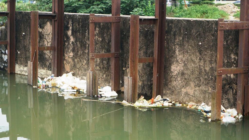 Xác lợn nổi lềnh bềnh trên kênh nước thô cấp cho nhà máy nước sạch Thanh Hóa Ảnh 5