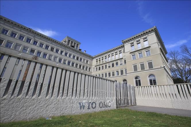 WTO cảnh báo tốc độ gia tăng các rào cản thương mại Ảnh 1