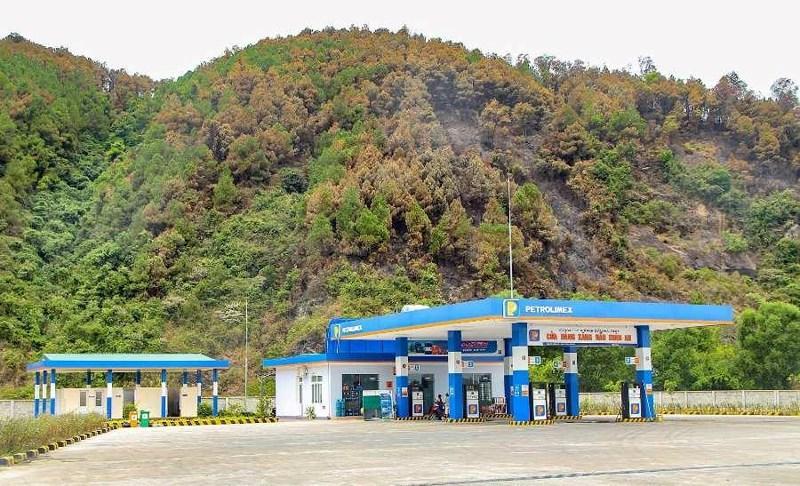 Chùm ảnh: Rừng thông Hồng Lĩnh 'chết đứng' sau cháy rừng Ảnh 8
