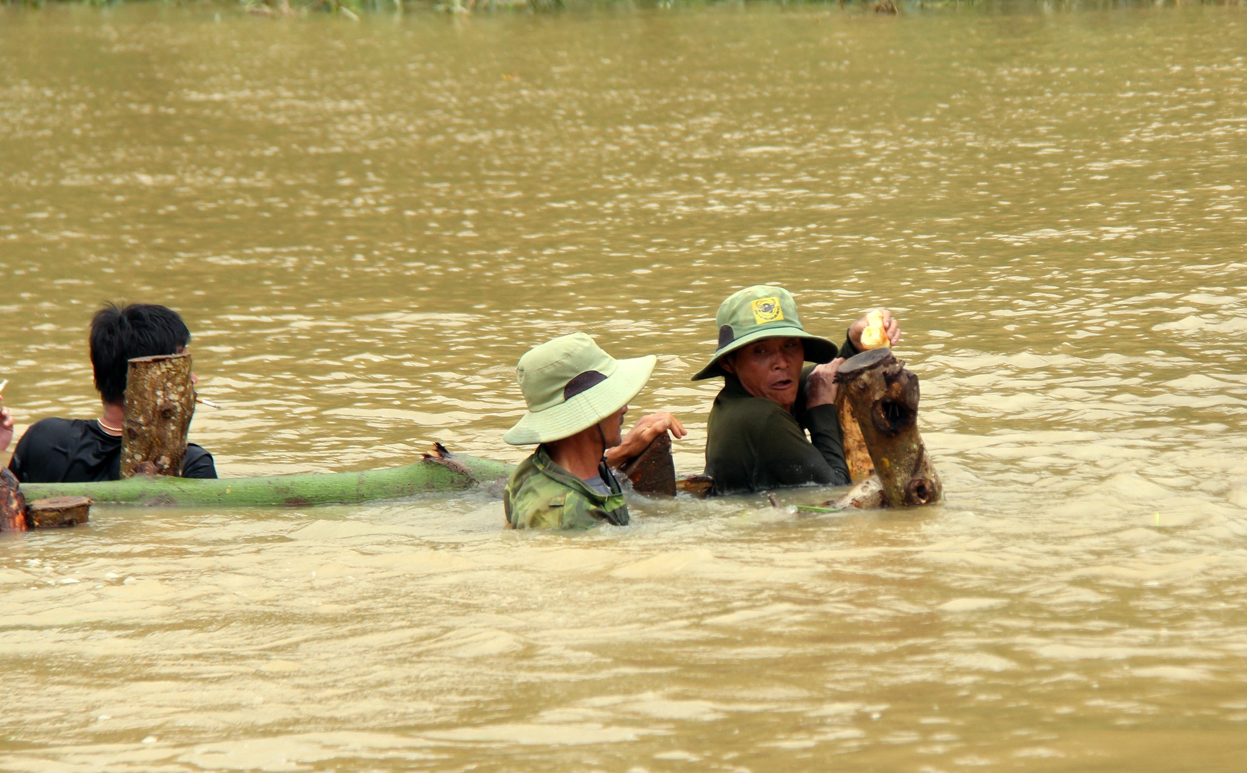 Vỡ đê, hàng trăm người dân trầm mình cứu đồng lúa Ảnh 8