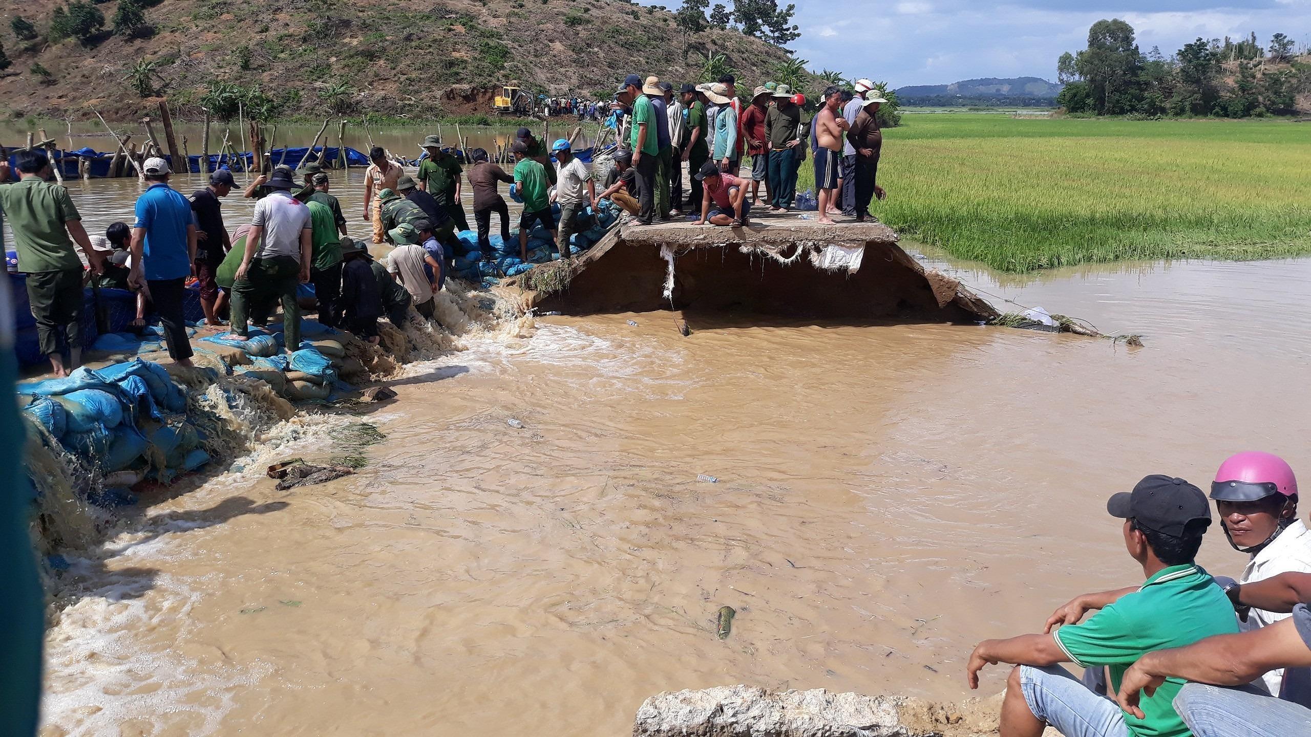 Vỡ đê, hàng trăm người dân trầm mình cứu đồng lúa Ảnh 5