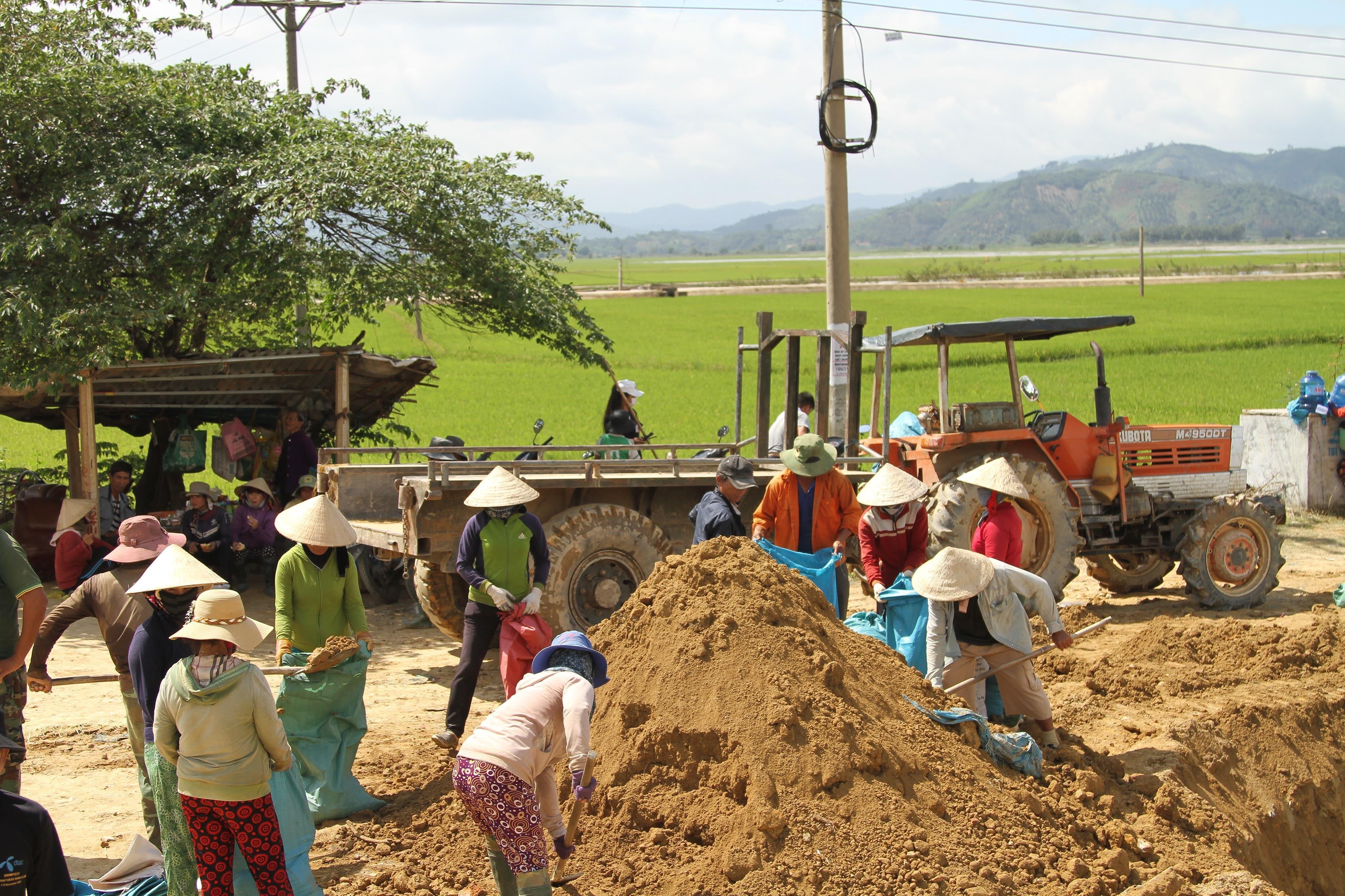 Vỡ đê, hàng trăm người dân trầm mình cứu đồng lúa Ảnh 4