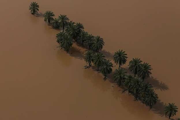 Thời tiết cực đoan hoành hành khắp thế giới nửa đầu năm 2019 Ảnh 9