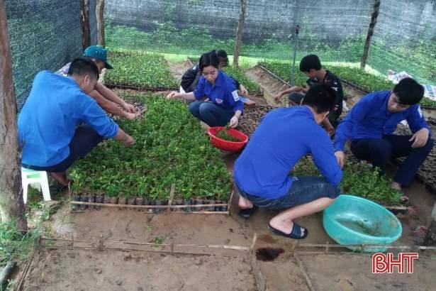 Tuổi trẻ Hà Tĩnh hành động hưởng ứng kỷ niệm 20 năm 'Chiến dịch thanh niên tình nguyện hè' Ảnh 4