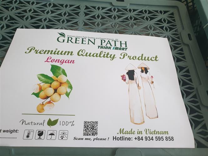 Quả nhãn tươi Việt Nam sẽ có mặt tại thị trường Australia trong ngày hôm nay 6/9 Ảnh 2