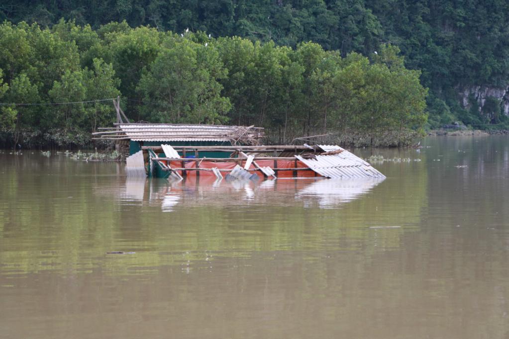 Xót xa những ngôi nhà bị ngập đến nóc ở vùng lũ Quảng Bình Ảnh 6