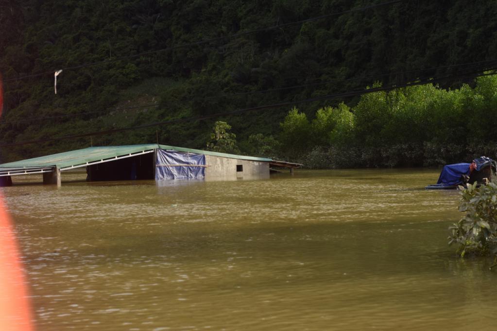 Xót xa những ngôi nhà bị ngập đến nóc ở vùng lũ Quảng Bình Ảnh 5