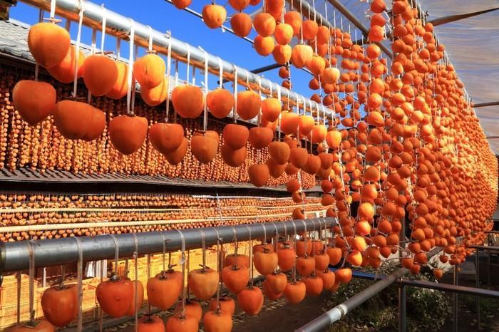 Du lịch Nhật Bản vào mùa thu, bạn đừng quên trải nghiệm những lễ hội hấp dẫn này Ảnh 6