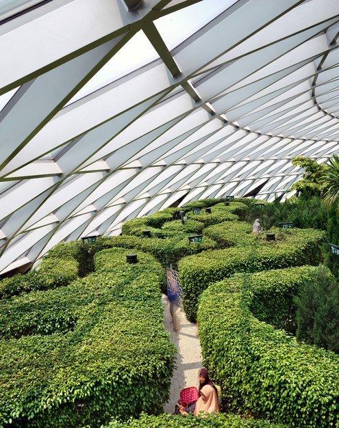 Singapore siêu thực, huyền ảo như viễn cảnh về thế giới tương lai Ảnh 8