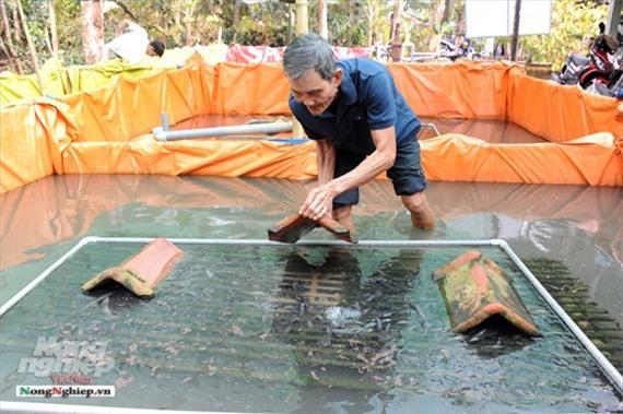 Cần Thơ: Ăn nên làm ra nhờ nuôi lươn không bùn Ảnh 14