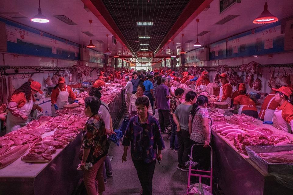 Khám phá kho dự trữ thịt lợn chiến lược của Trung Quốc Ảnh 2