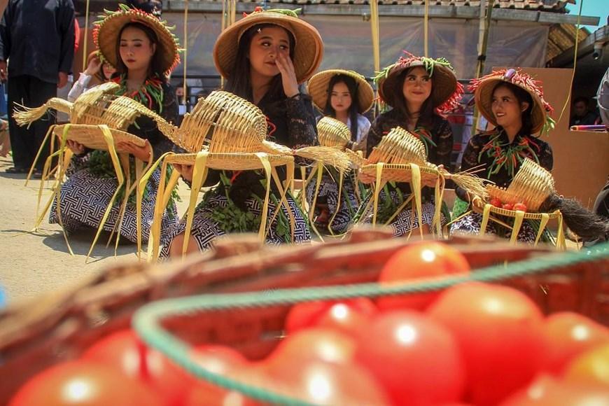 Thích thú với lễ hội 'đại chiến cà chua' ở đất nước Indonesia Ảnh 6