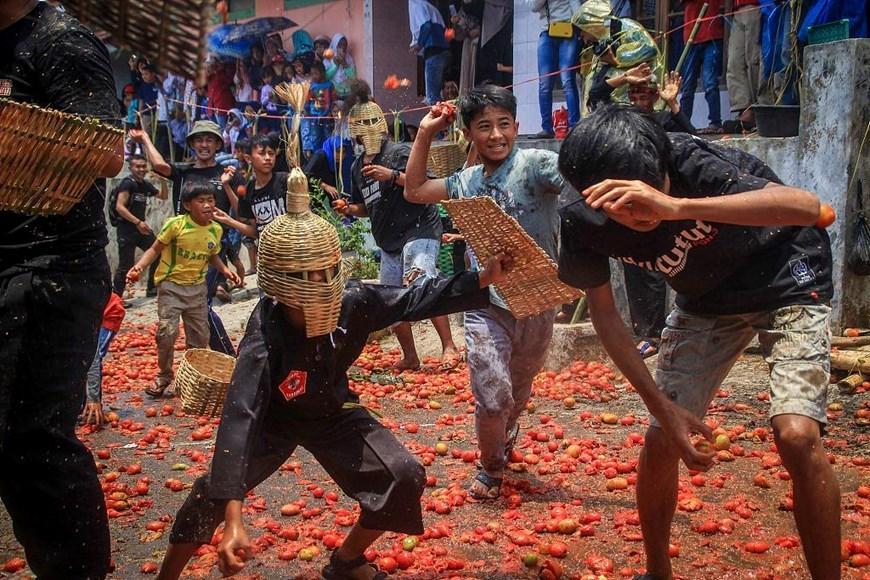 Thích thú với lễ hội 'đại chiến cà chua' ở đất nước Indonesia Ảnh 1