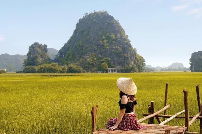 Sen nở rộ, lúa trải vàng ở 'thánh địa check-in' đẹp nhất Ninh Bình Ảnh 3