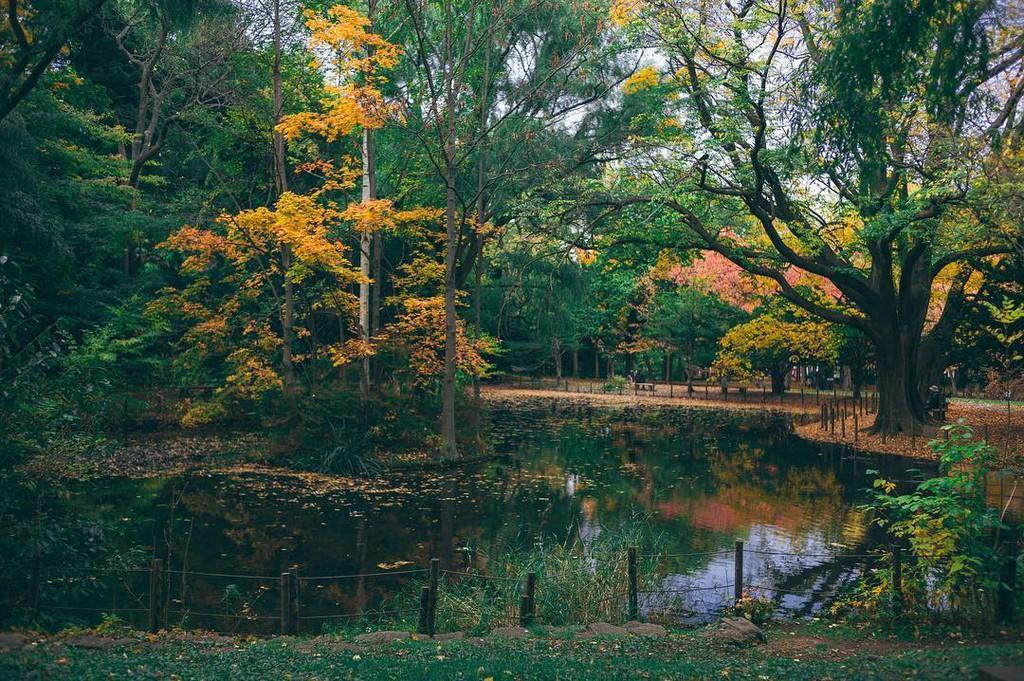 Nhật Bản đẹp mơ màng trong ảnh check-in của Chanathip Ảnh 12