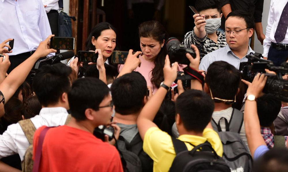 Bà Lê Hoàng Diệp Thảo muốn thêm 20% cổ phần cho các con Ảnh 2
