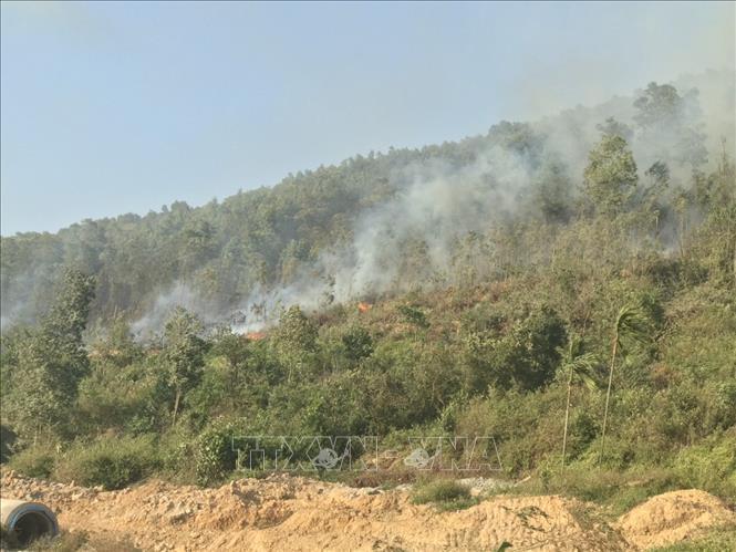 Đã dập tắt đám cháy rừng ở Kinh Môn, Hải Dương Ảnh 1