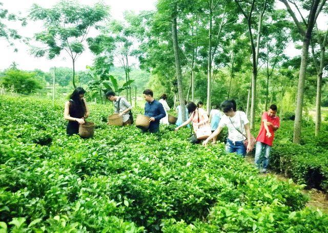 Hà Nội có 47/52 nghề truyền thống của cả nước Ảnh 1
