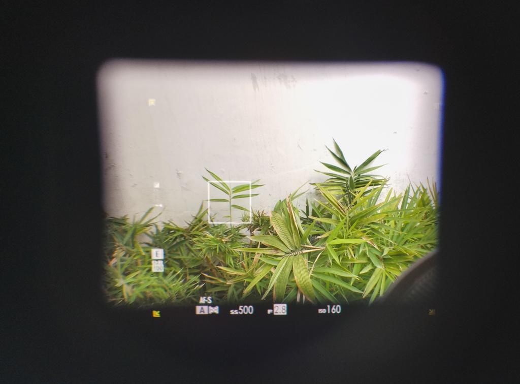 Đánh giá Fujifilm X-Pro3 - chỉ fan cứng mới mua Ảnh 8