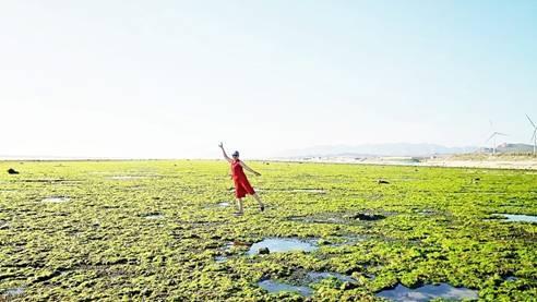 Ninh Thuận: Vẻ đẹp rất riêng của biển Ảnh 1