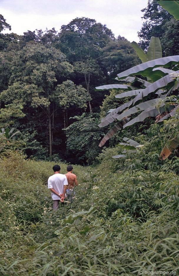 Tam Cốc - Bích Động (Ninh Bình) đẹp giản dị ở những năm 90 Ảnh 9
