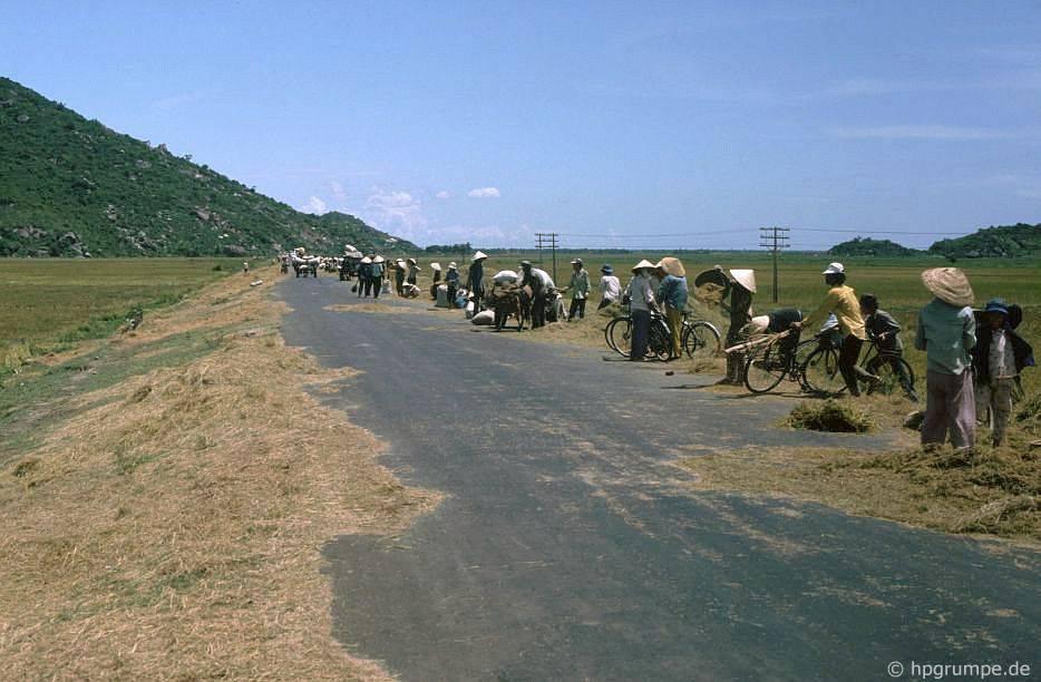 Chùm ảnh màu 'cực độc' về xứ 'hoa vàng cỏ xanh' Phú Yên đẹp lạ lùng thập niên 90 Ảnh 3