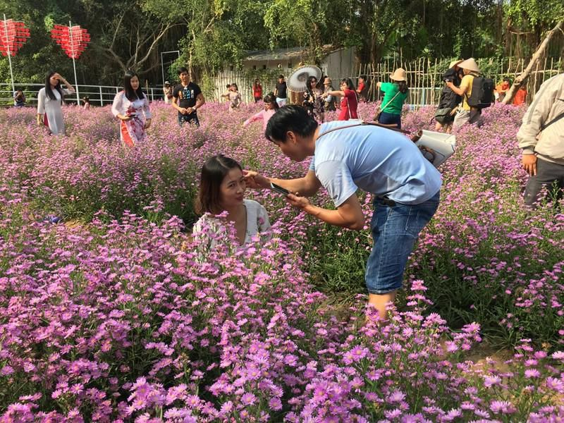 Ùn ùn 'check-in' vườn hoa thạch thảo ở Cần Thơ Ảnh 5