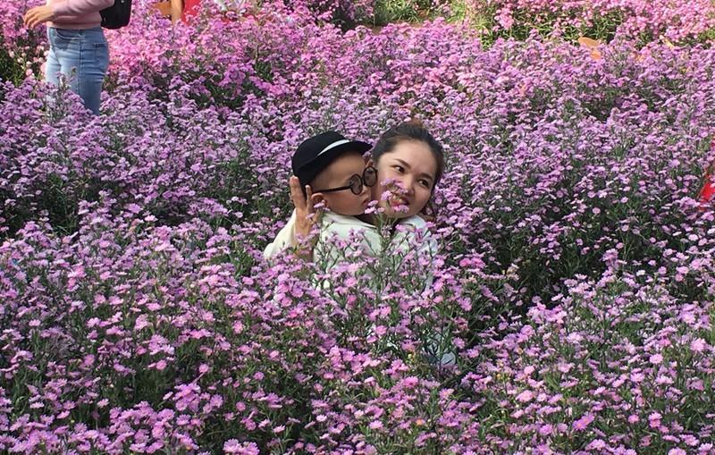 Ùn ùn 'check-in' vườn hoa thạch thảo ở Cần Thơ Ảnh 7