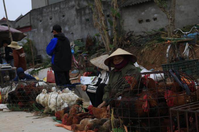 Ghé thăm chợ Rào, Bắc Giang vào một ngày giáp Tết Ảnh 5