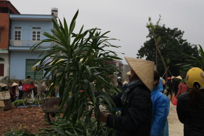 Ghé thăm chợ Rào, Bắc Giang vào một ngày giáp Tết Ảnh 8