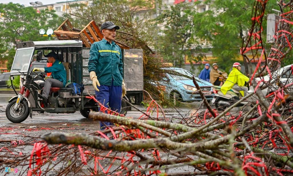 Đào rừng bị vứt bỏ, dân đánh ôtô gom chơi Tết Ảnh 6
