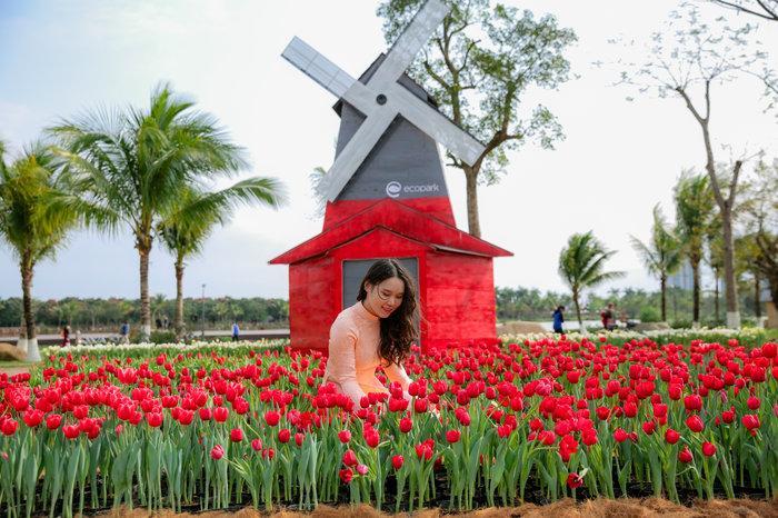 Hàng nghìn du khách ùn ùn đổ về chụp ảnh cùng hoa tulip tuyệt đẹp như trời Âu ở Hà Nội Ảnh 2