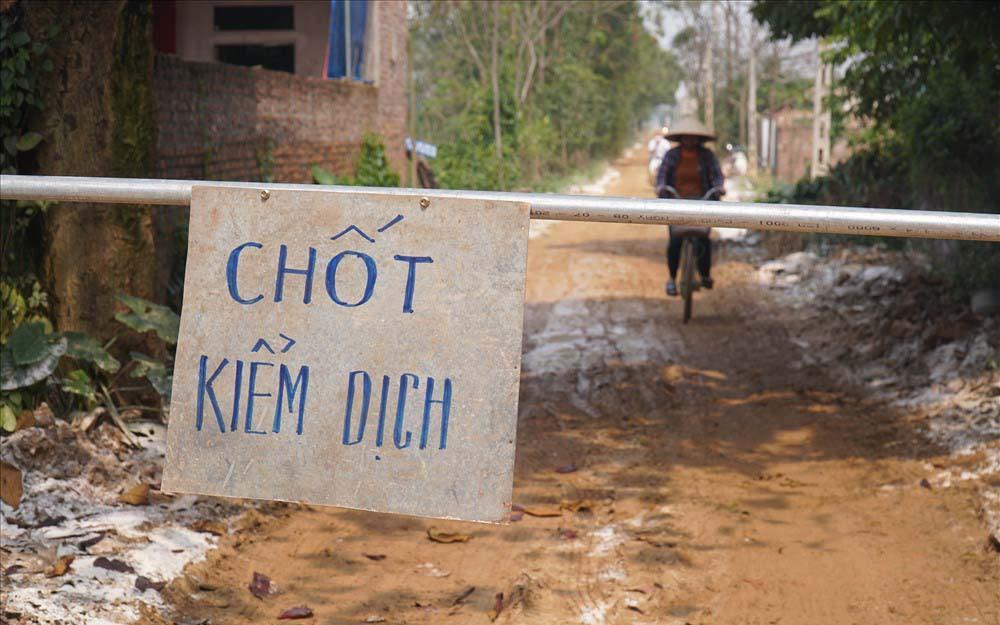 Hà Nội tiêu hủy gần 7.000 con gia cầm nhiễm cúm A H5N6 Ảnh 1