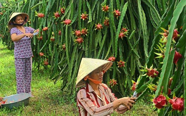 Quảng Ninh nâng cao năng lực cạnh tranh cấp sở, ngành, địa phương Ảnh 1