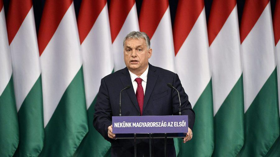 Hungary sẽ trồng thêm 10 cây xanh mỗi khi có một em bé chào đời Ảnh 1