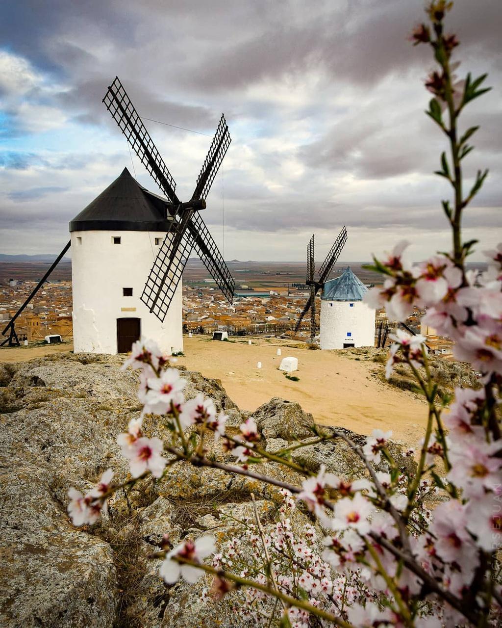 Thiên đường cối xay gió đẹp như tranh vẽ ở Tây Ban Nha Ảnh 4