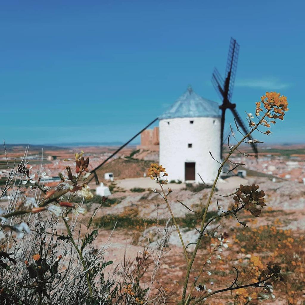 Thiên đường cối xay gió đẹp như tranh vẽ ở Tây Ban Nha Ảnh 3