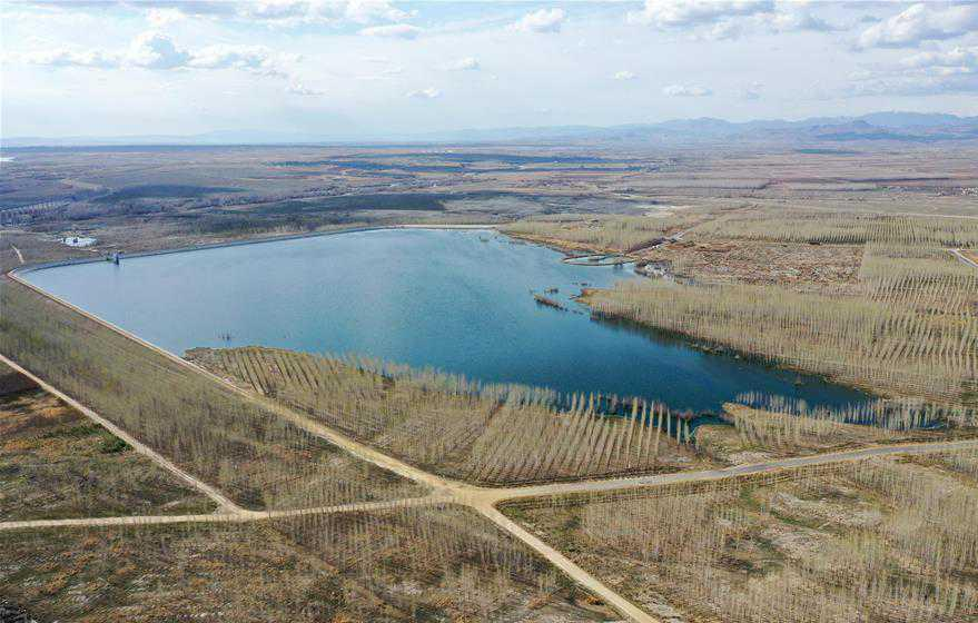 Tái sử dụng nước thải để phủ xanh sa mạc tại Trung Quốc Ảnh 1