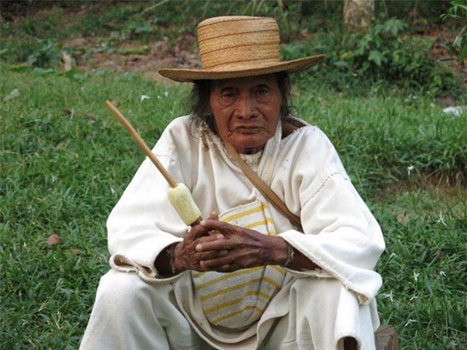 Bí ẩn bộ tộc 8.000 năm ở giữa rừng sâu, có lối sống 'thánh thiện' nhất thế giới Ảnh 12