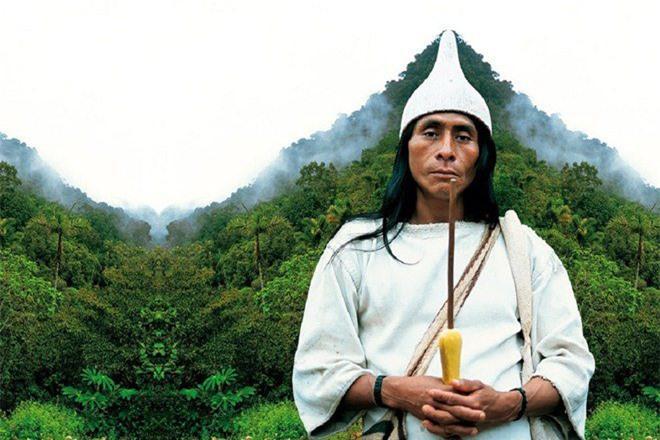 Bí ẩn bộ tộc 8.000 năm ở giữa rừng sâu, có lối sống 'thánh thiện' nhất thế giới Ảnh 4