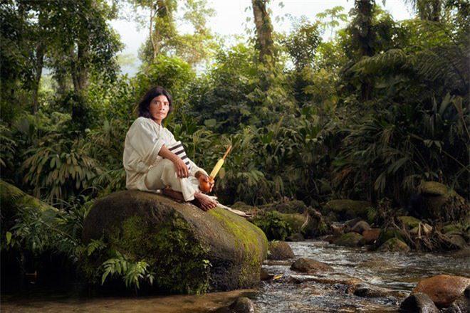 Bí ẩn bộ tộc 8.000 năm ở giữa rừng sâu, có lối sống 'thánh thiện' nhất thế giới Ảnh 5