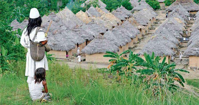 Bí ẩn bộ tộc 8.000 năm ở giữa rừng sâu, có lối sống 'thánh thiện' nhất thế giới Ảnh 6