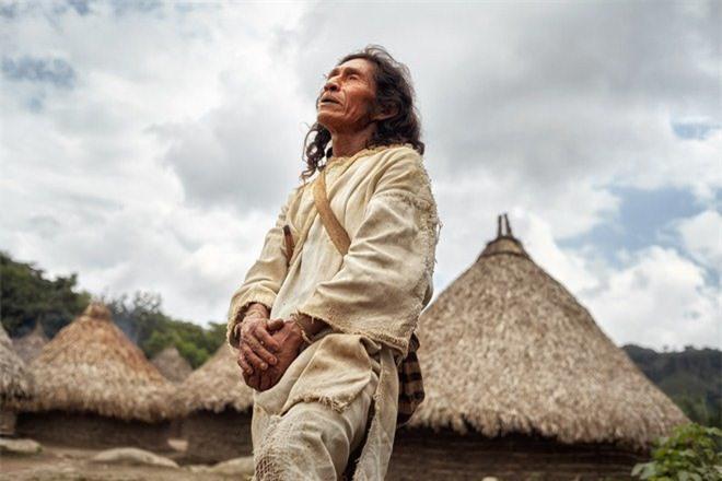 Bí ẩn bộ tộc 8.000 năm ở giữa rừng sâu, có lối sống 'thánh thiện' nhất thế giới Ảnh 11