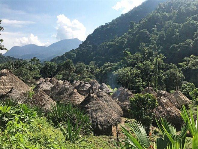 Bí ẩn bộ tộc 8.000 năm ở giữa rừng sâu, có lối sống 'thánh thiện' nhất thế giới Ảnh 8
