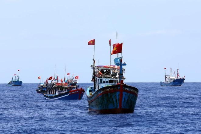 Hội Nghề cá Việt Nam kịch liệt phản đối hành động phi lý của Trung Quốc Ảnh 1