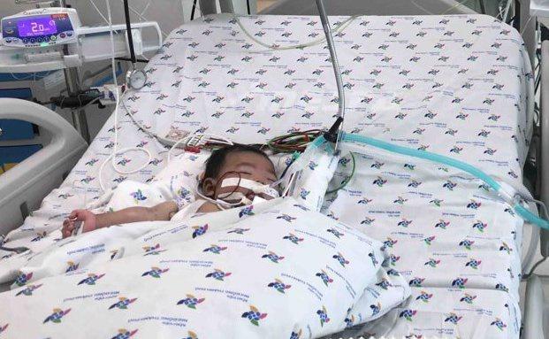 Bé 2 tuổi nguy kịch do nhiễm vi khuẩn tụ cầu vàng kháng thuốc Ảnh 1