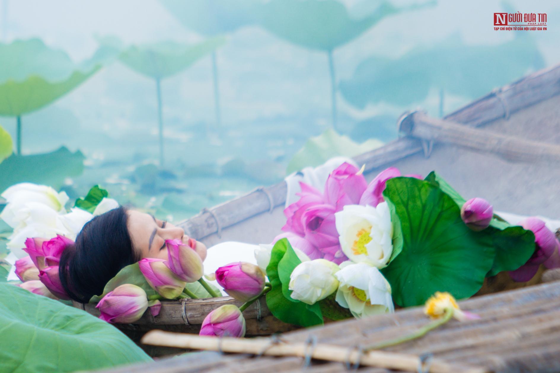 Hoa sen đầu mùa rong ruổi khắp phố phường Hà Nội Ảnh 16
